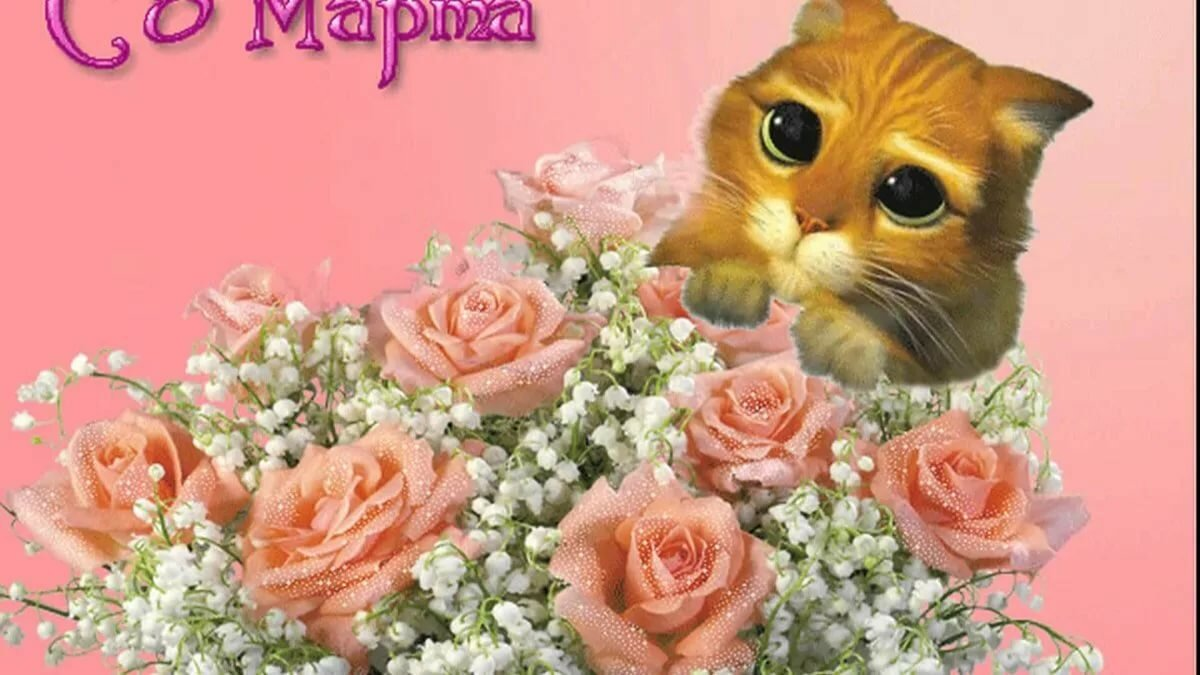 8 марта картинки котята, день