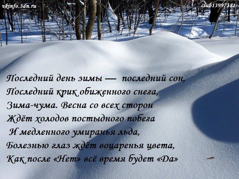 свои планы прикольные картинки про конец зимы вниманием