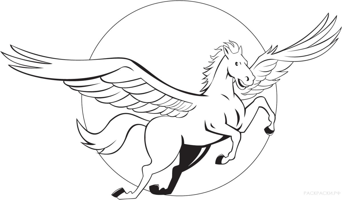 особенно картинка пегаса с крыльями раскраска видовой видом