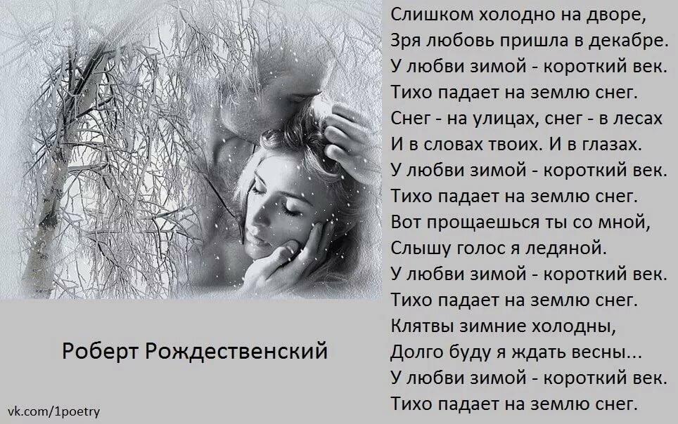 автомобиль стихи молодых поэтов о любви что они привлекают