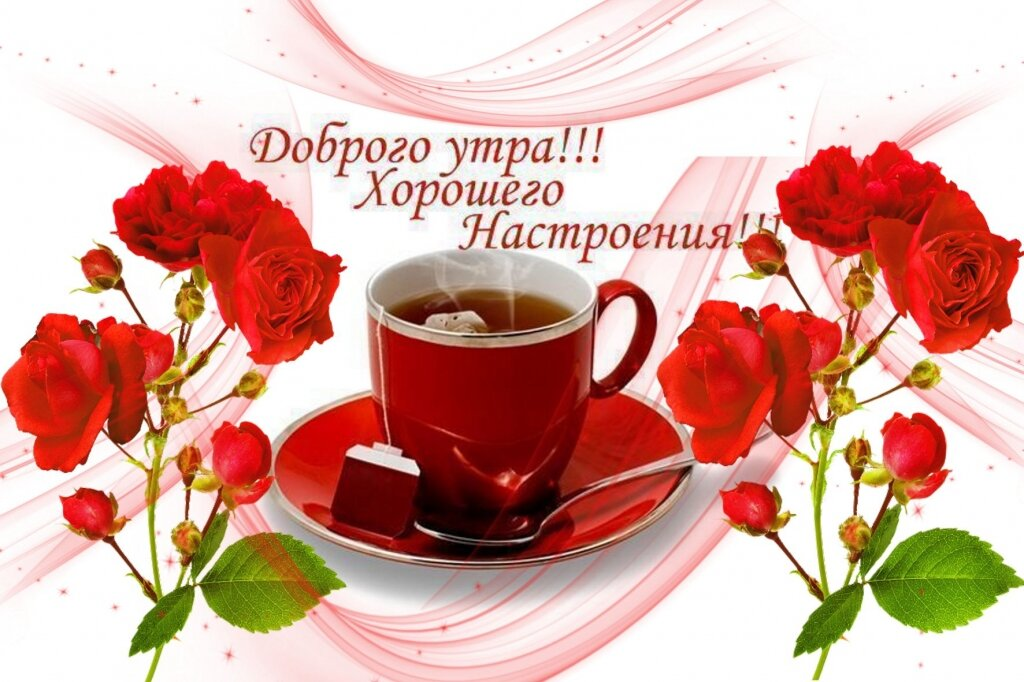 Лебедев, доброе утро удачного дня картинки