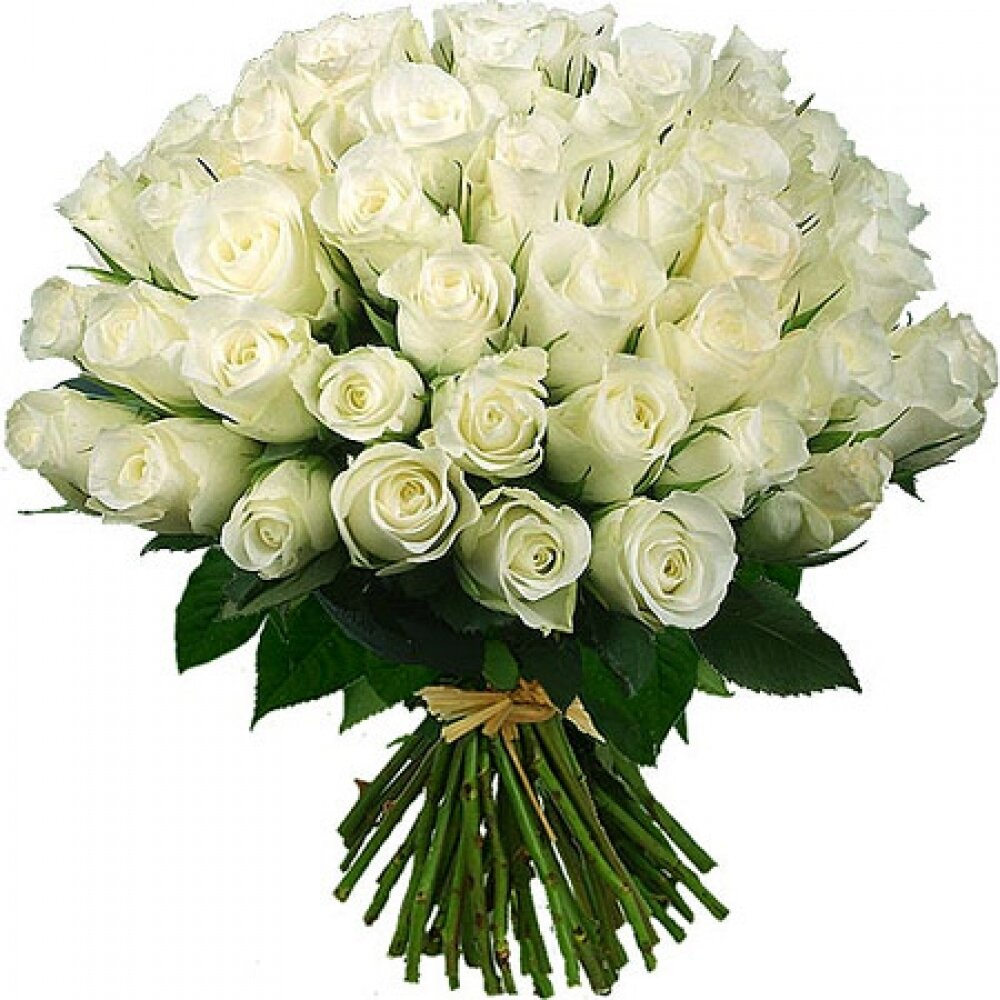 Открытки с букетом из белых роз, днем рождения