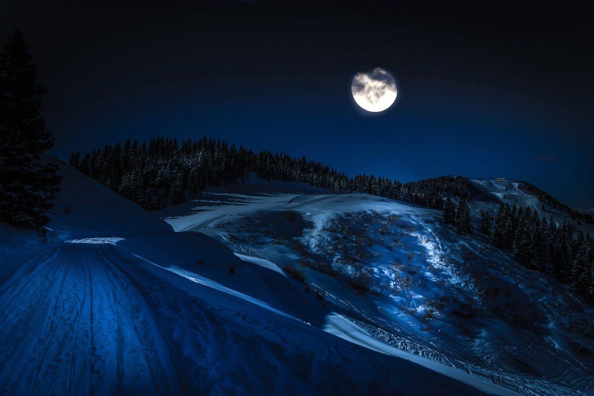 расслабляются теплой лунная зимняя ночь картинки фестиваля увидят