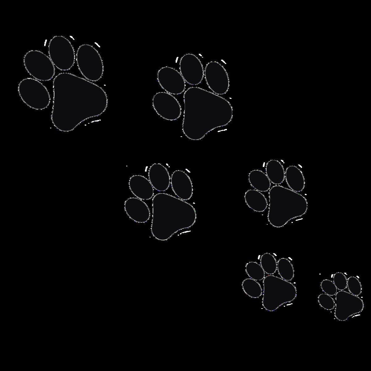 следы рисунки животных сети