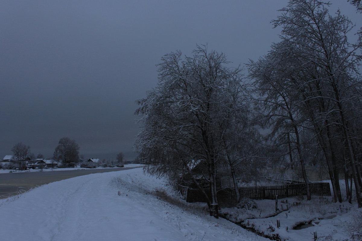 Пасмурный зимний день фото те