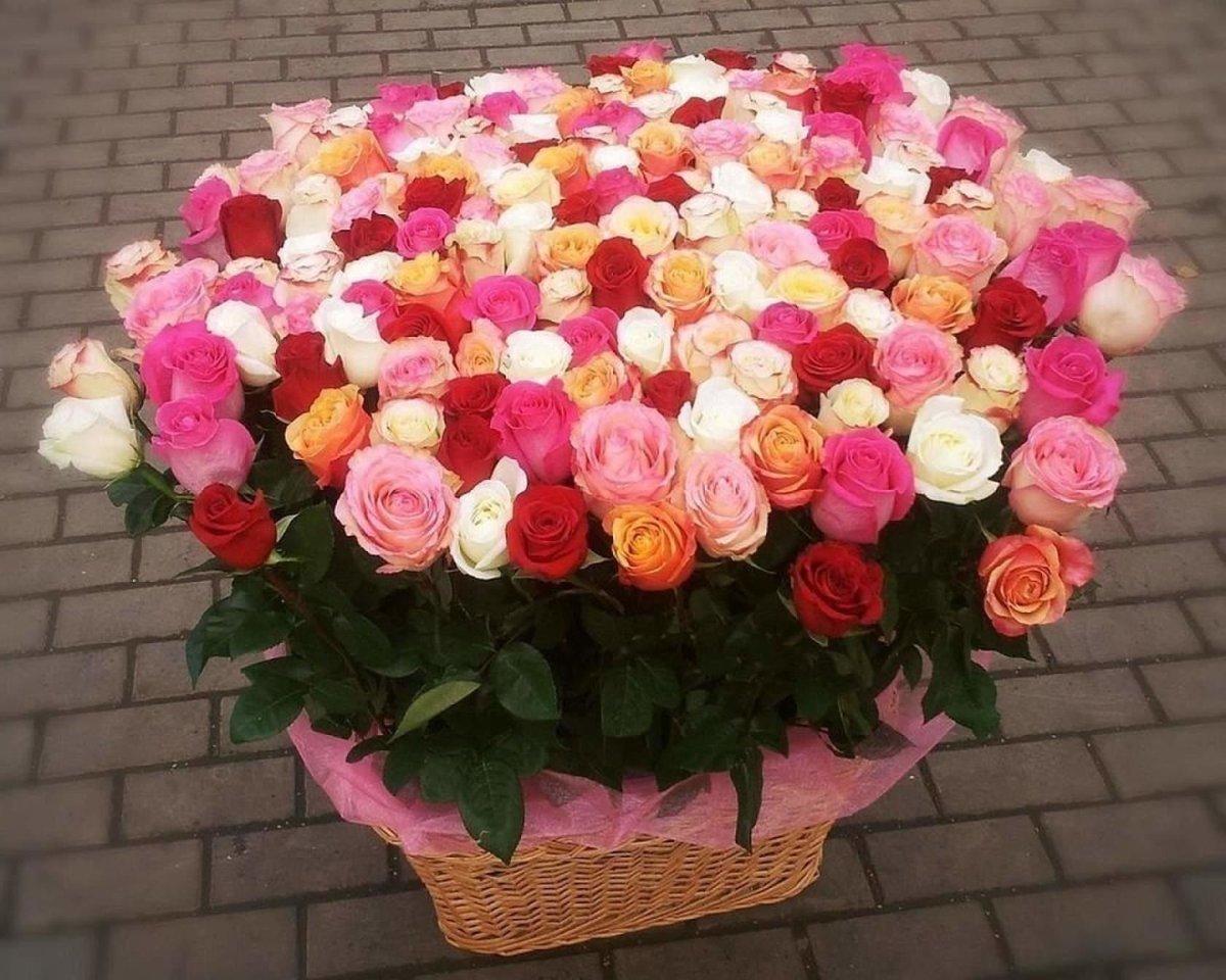 Большой и красивые букеты роз в мира фото, невесты