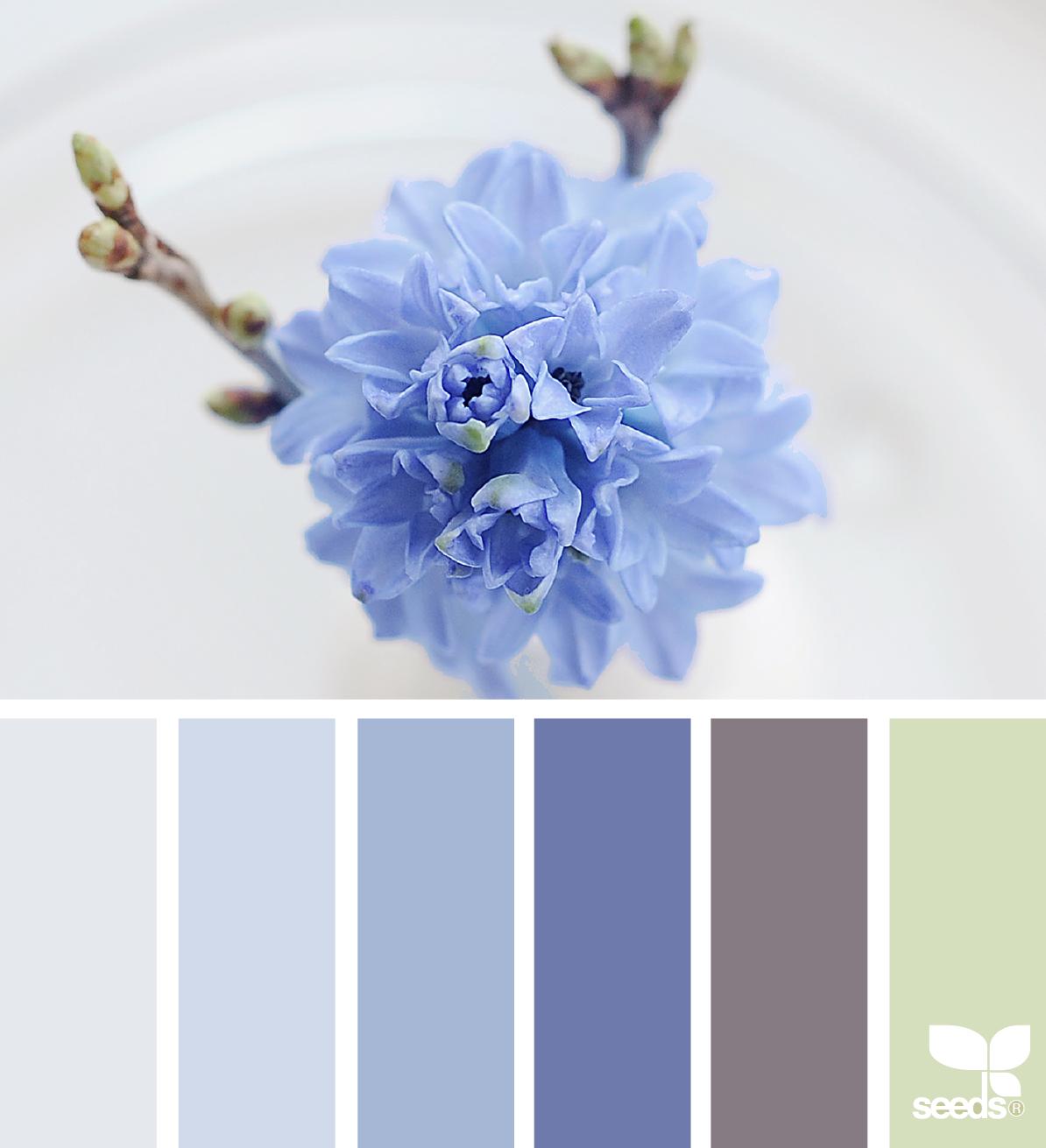сочетание цветов в картинках синий многие вещи, которые