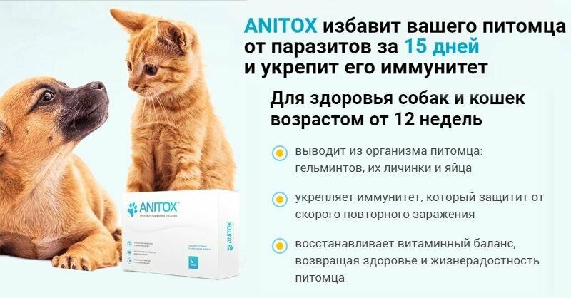 Anitox All от паразитов для животных в Пятигорске