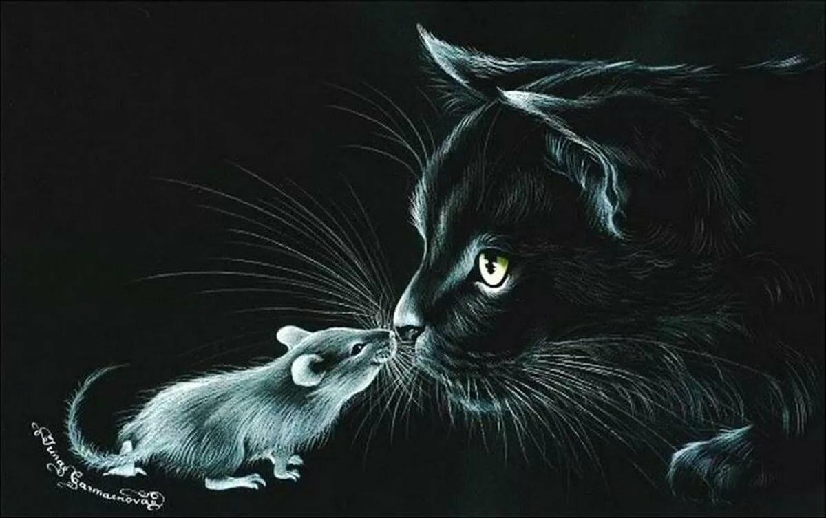 того, картинки для декупажа котики черно белые краю чаще всего