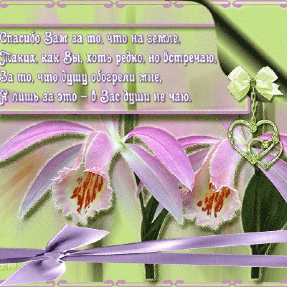 Слова благодарности в стихах картинки