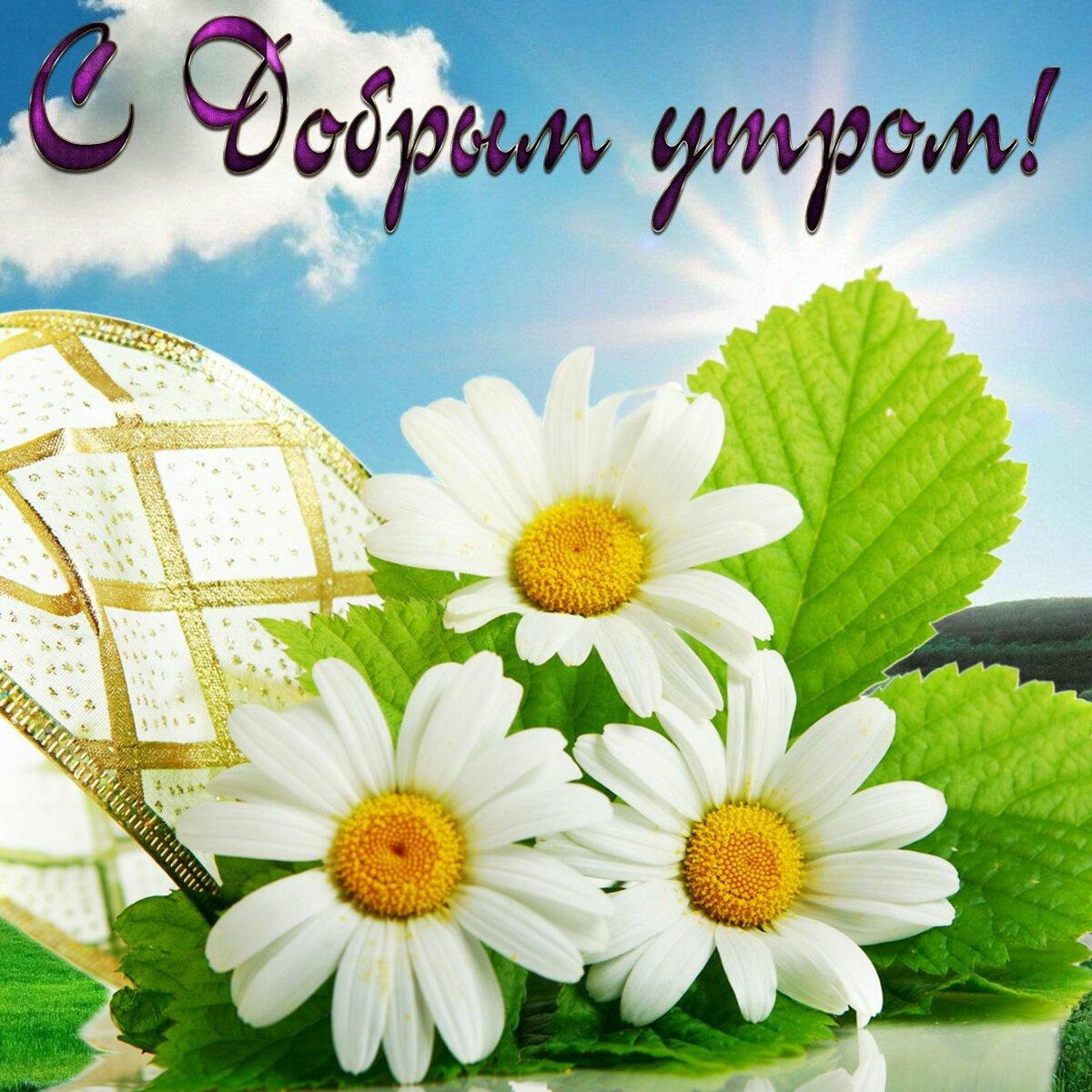 Картинки открытка, христианские картинки с надписями с добрым утром цветы