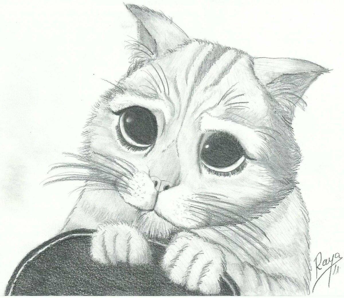 Открытки прикольные, самые милые картинки животных карандашом