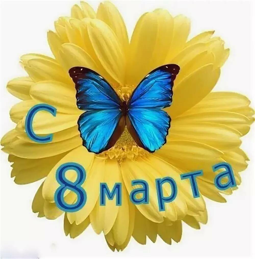 Мартышками, поздравления с 8 марта в прозе короткие прикольные картинки
