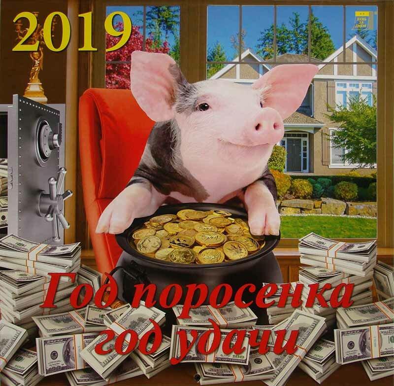 Поздравления, прикольные картинки свиньи на 2019 год