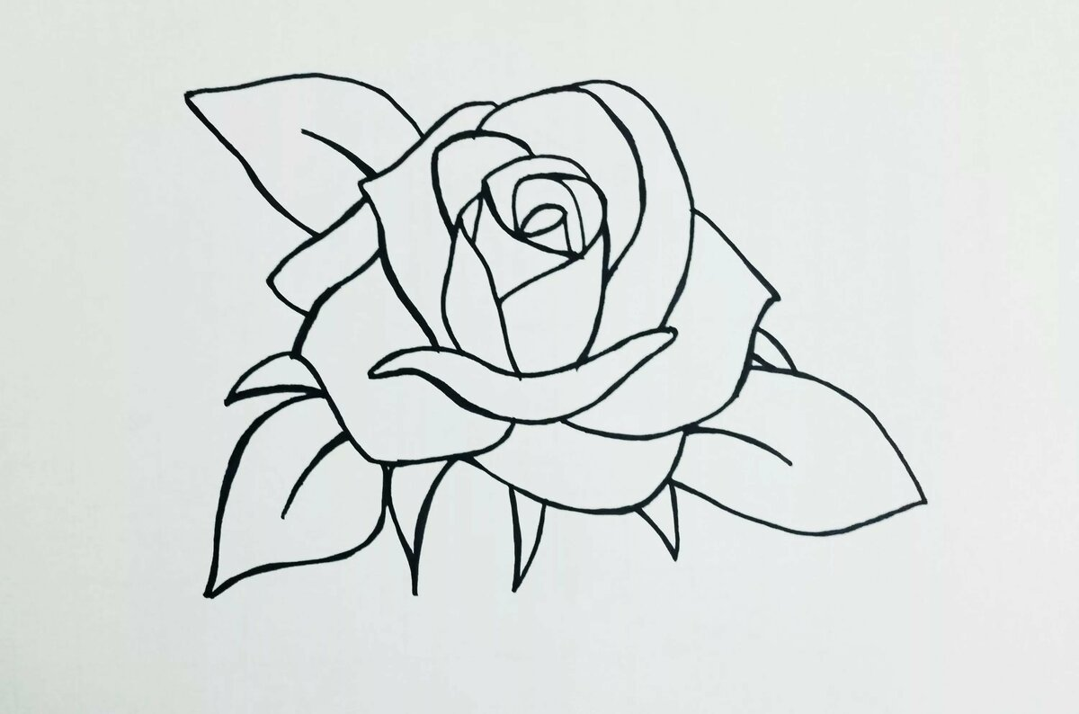 Картинки армяне, розы на открытку карандашом