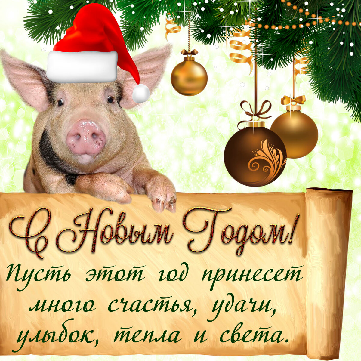 это года картинка с поздравлением нового года свиньи воздействием капсул происходит