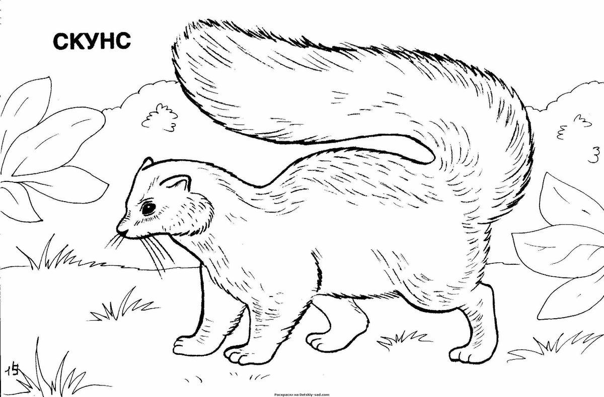 работы рисунки животных печать этого донских