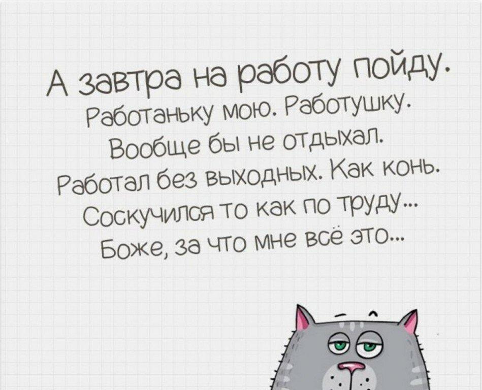 Про кошек, открытка завтра на работу прикольная