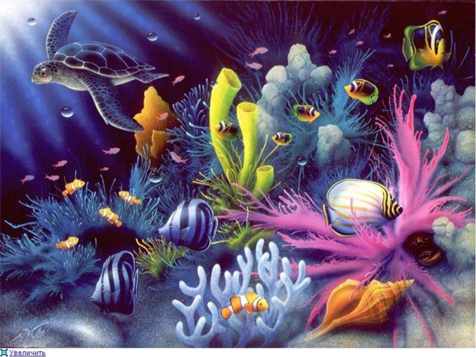 Открытки подводные, открытку днем рождения
