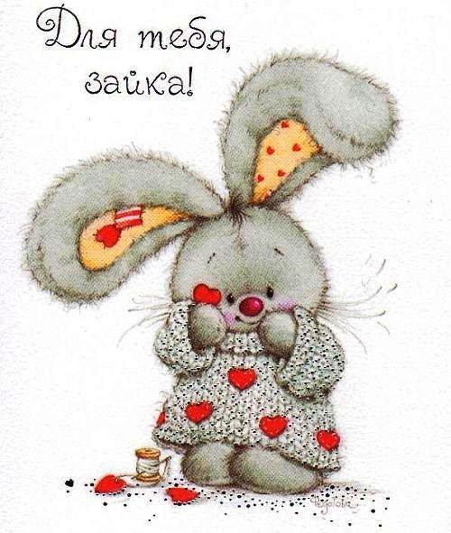 Картинки с надписью заяц мой любимый