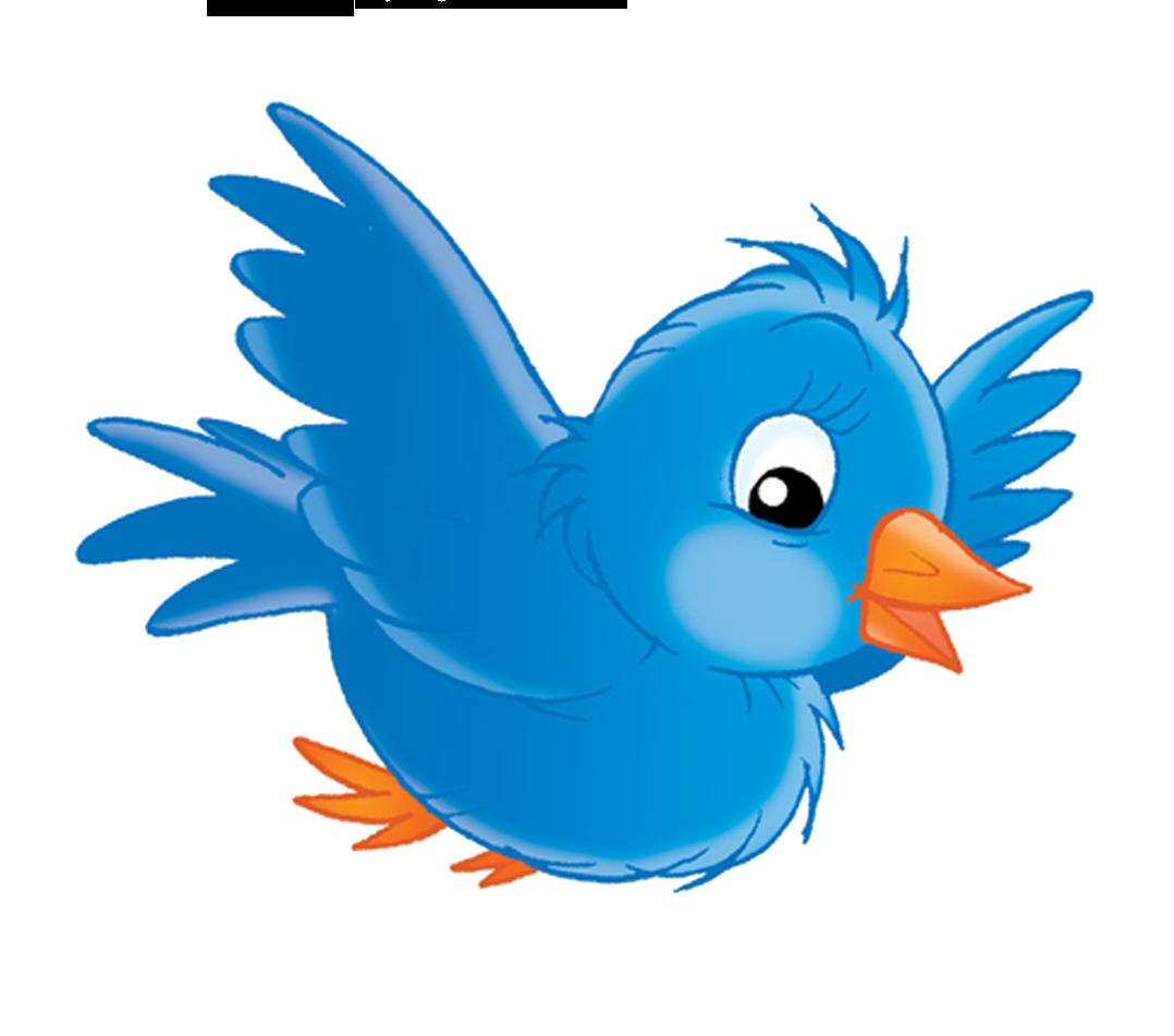 Картинки птички для детей, суздаль кремль