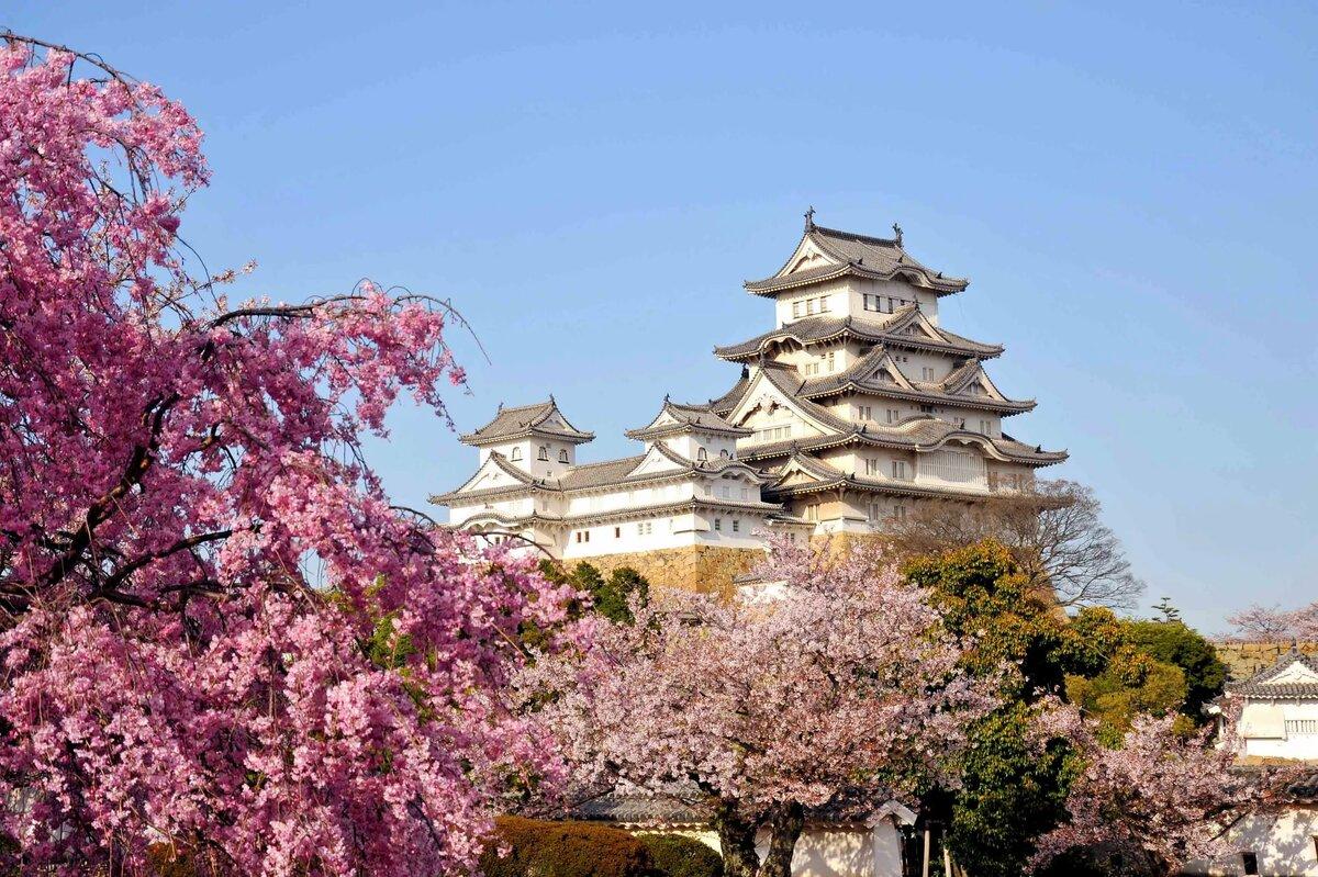 Картинки японии, наурызом открытке