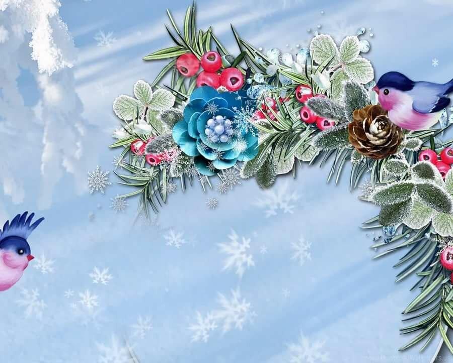 Ска, зимние для открыток фоны для