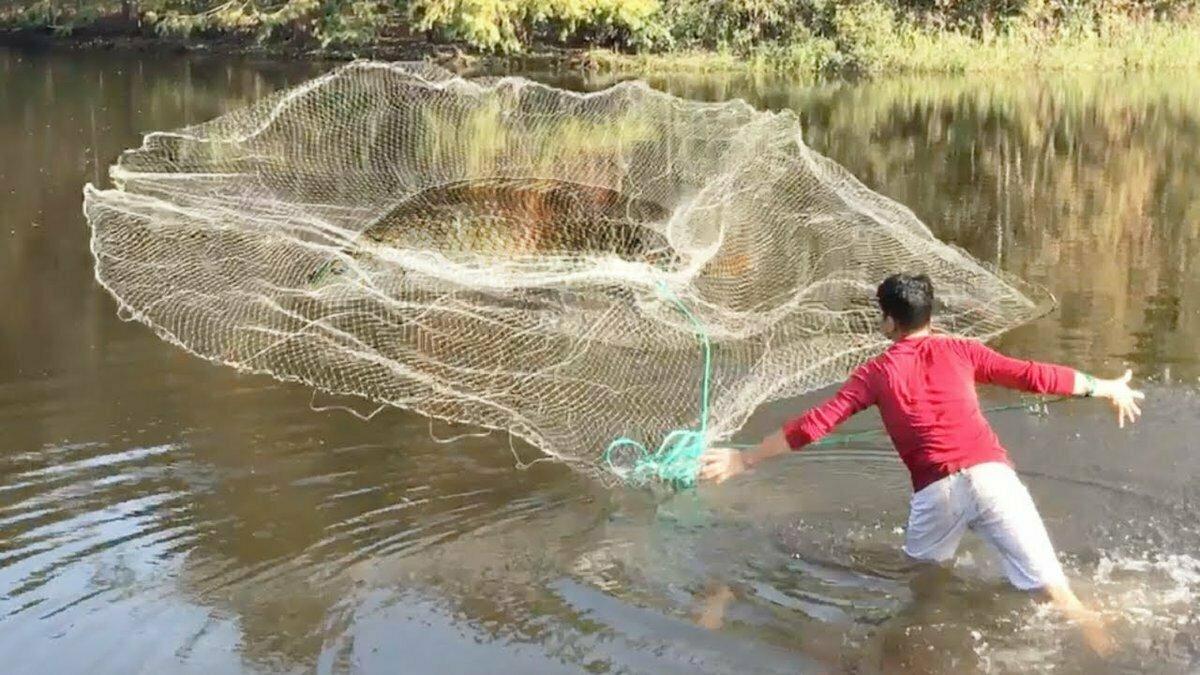 Супер ловушка Findfish в Муроме