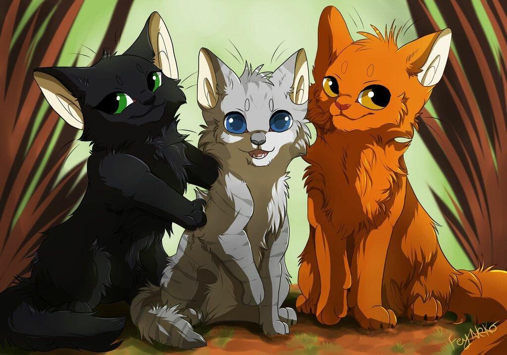 Картинки милые коты воители
