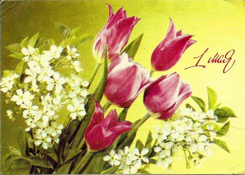 Картинки поздравительную открытку к одному из праздников, смешная картинка открытки