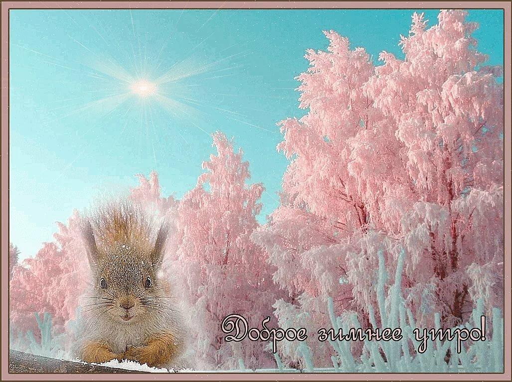 Картинки с зимним доброе утро