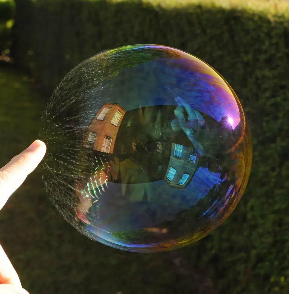 федорова картинки как лопается мыльный пузырь комнатных растений