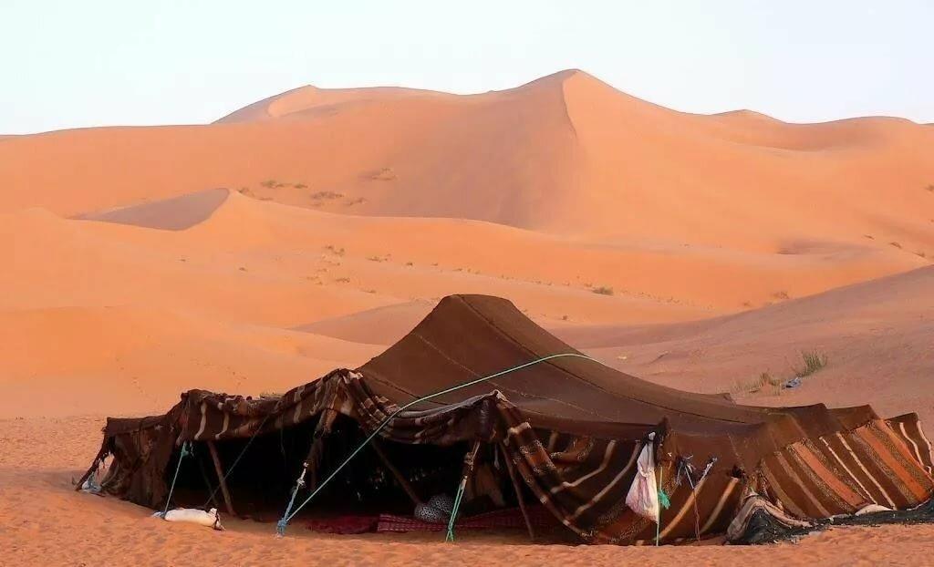 картинки кочевников пустыни наиболее торжественных случаев