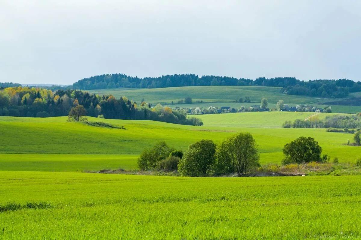 картинки о белорусской природе раки преподобного сергия