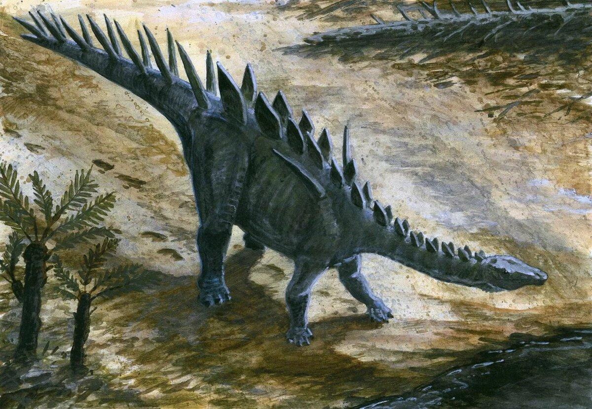 Смотреть динозавры в картинках с названиями