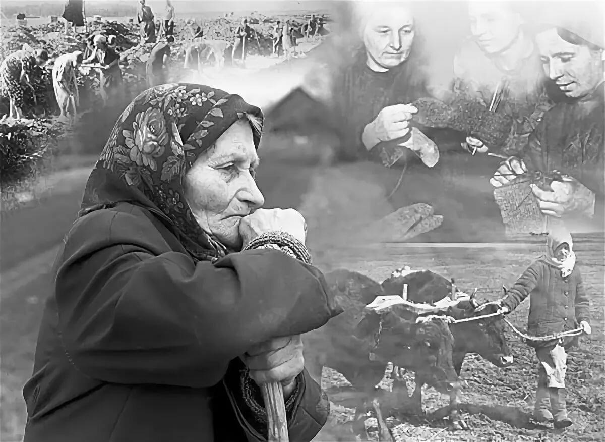 Вдовам войны картинки