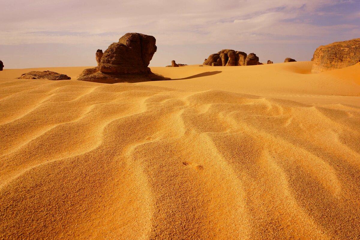 поэзии песочные картинки африка это