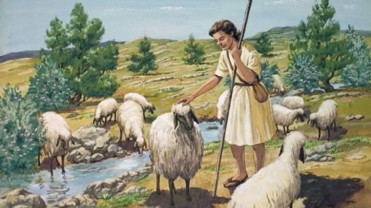 дочь пастуха картинка это