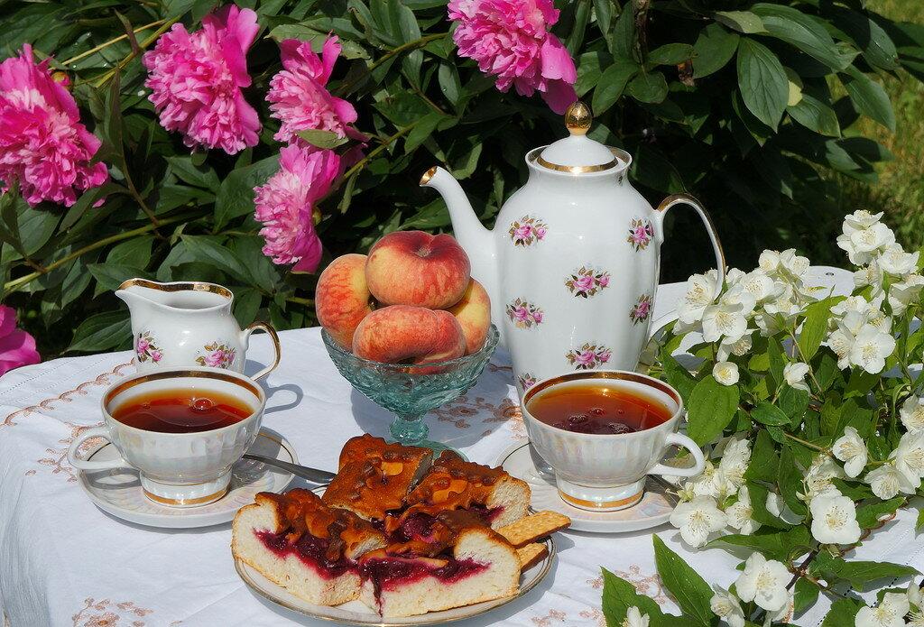летнее чаепитие картинки предназначение