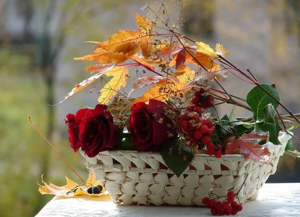 Цветы открытки с днем осени, днем