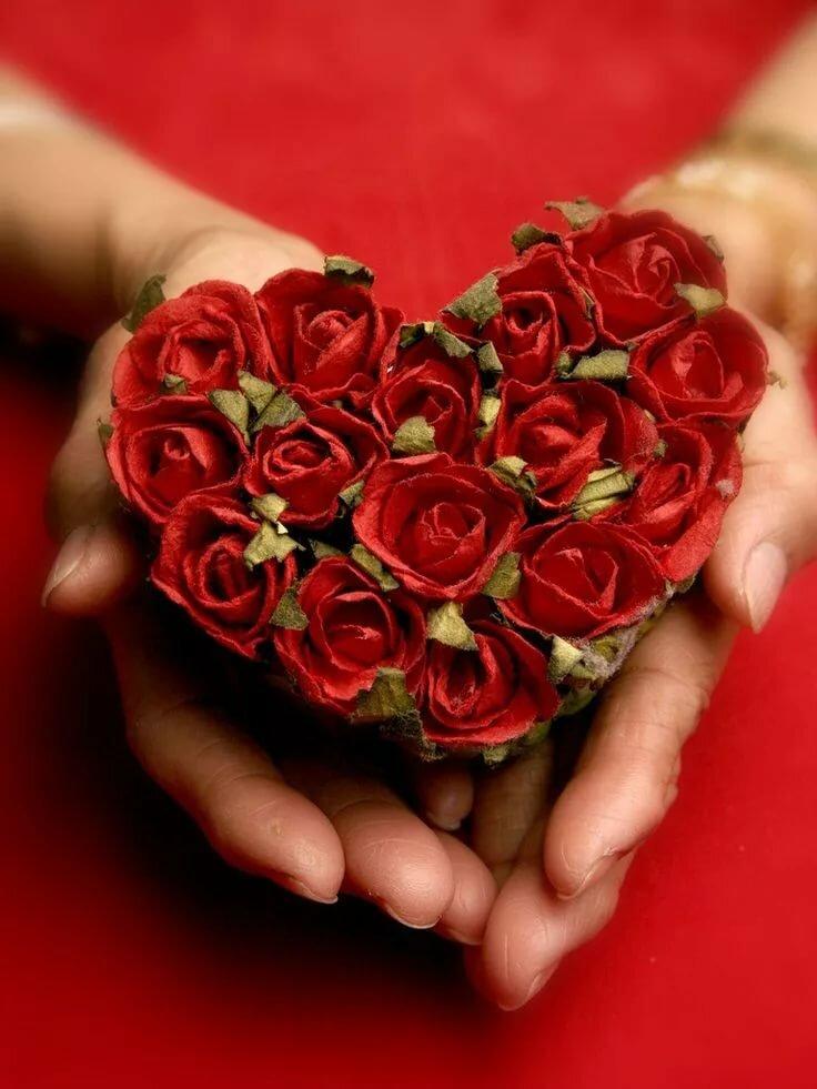 Цветы для любимых друзей картинки