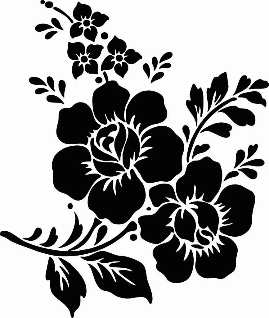 Картинки цветов на белом фоне черно белые