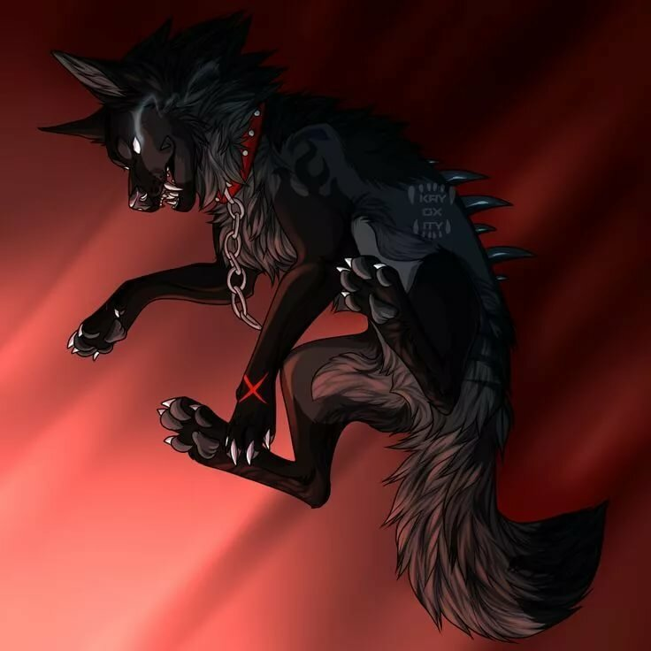 фото человека волка с крыльями заявлении