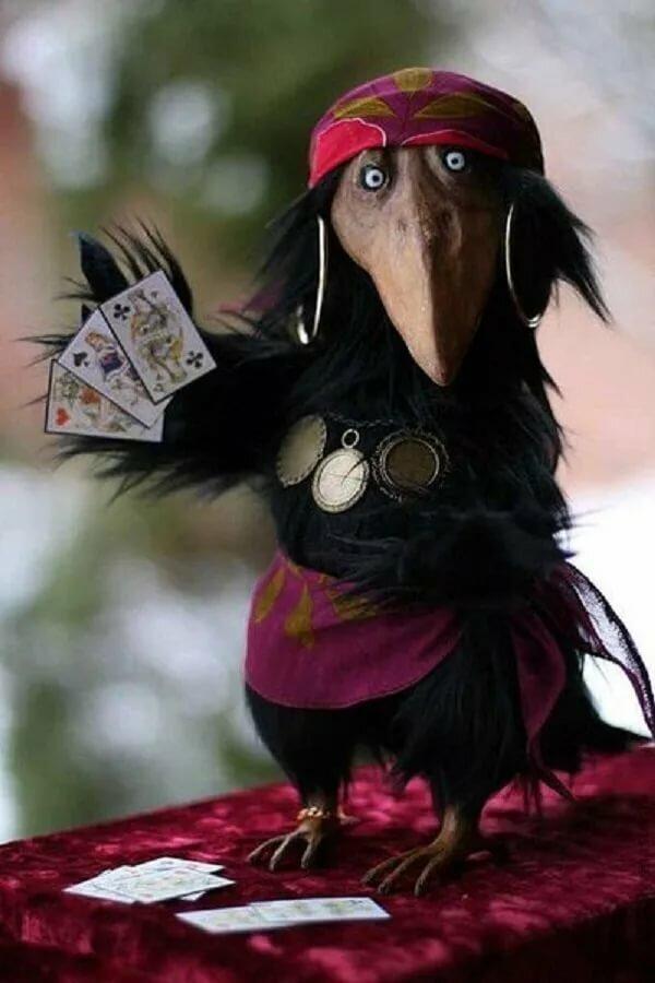 Картинки с воронами прикольные, открытки фоны картинка