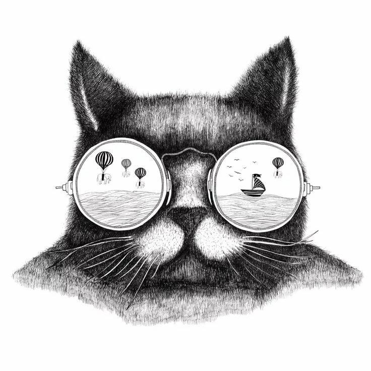 прикольные черно-белые рисунки кошек сумки относят