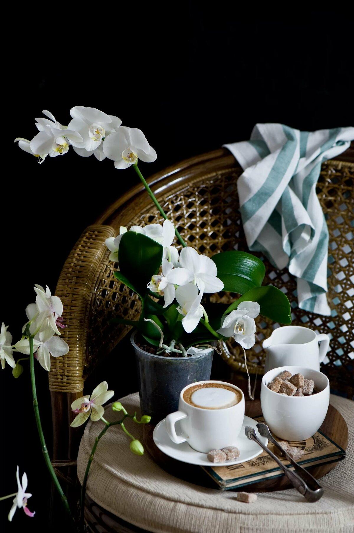 Картинки кофе и орхидея