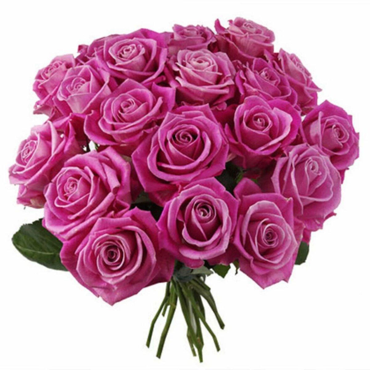 Букет роз гифы картинки, для поздравления