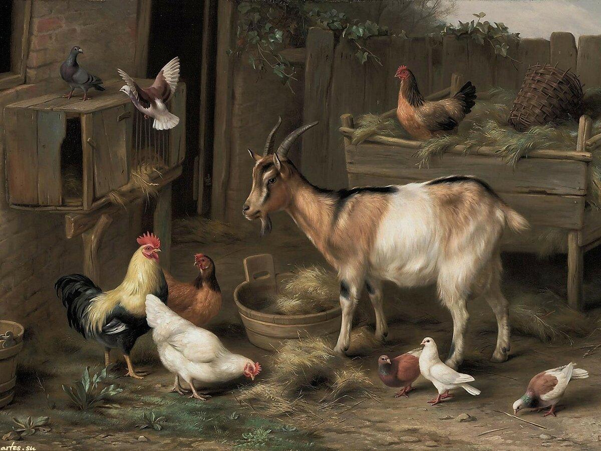 Картинки ферма и животные