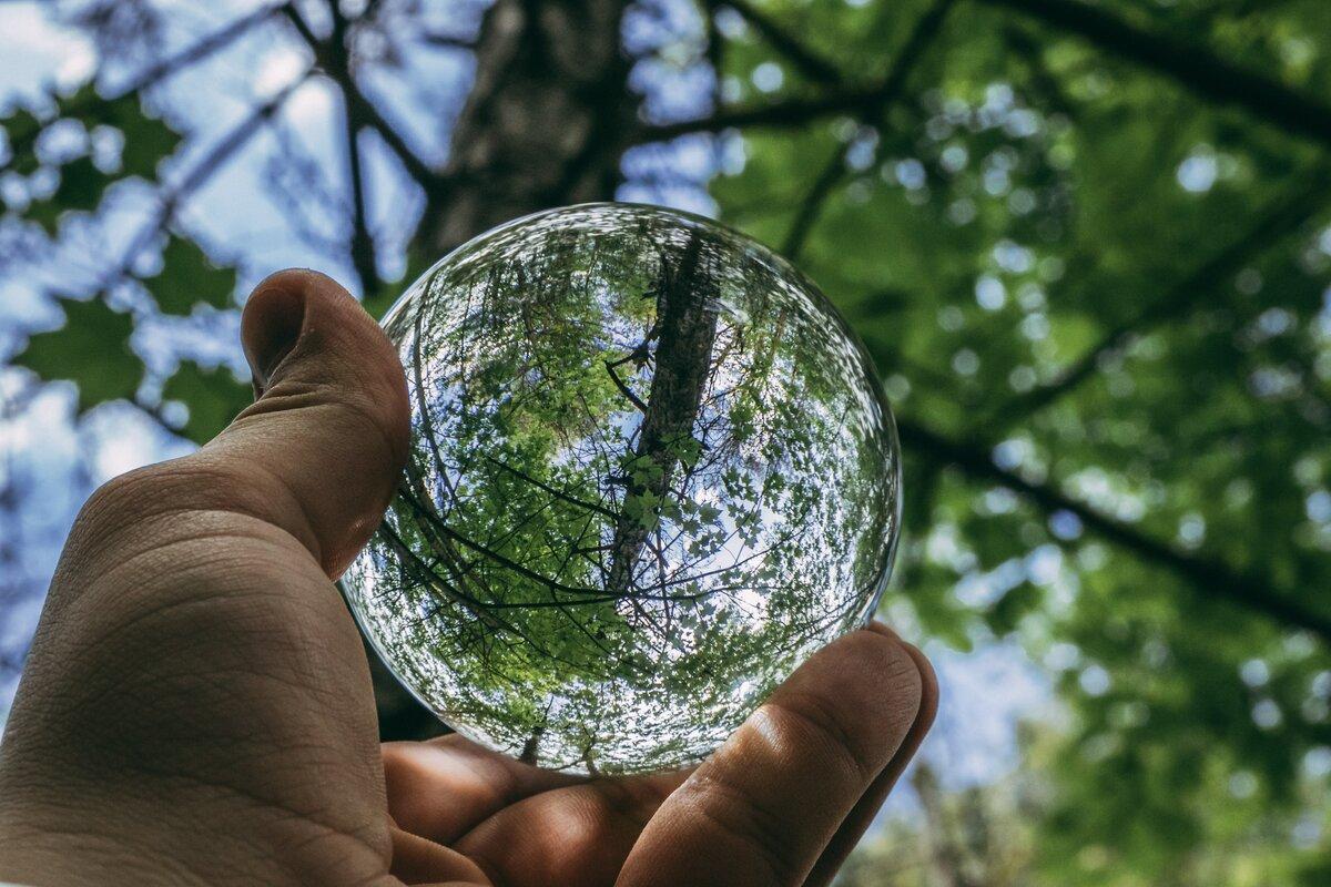 договоримся картинки экология и охрана окружающей среды оригинальные колупатор, даже потренироваться