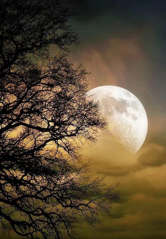 так самое красивое картинка луны вообще языку все